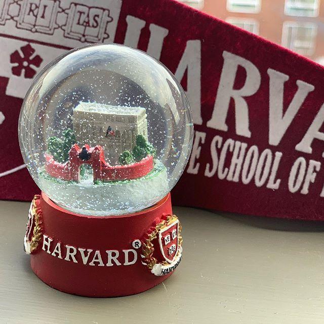 Harvard memorabilia