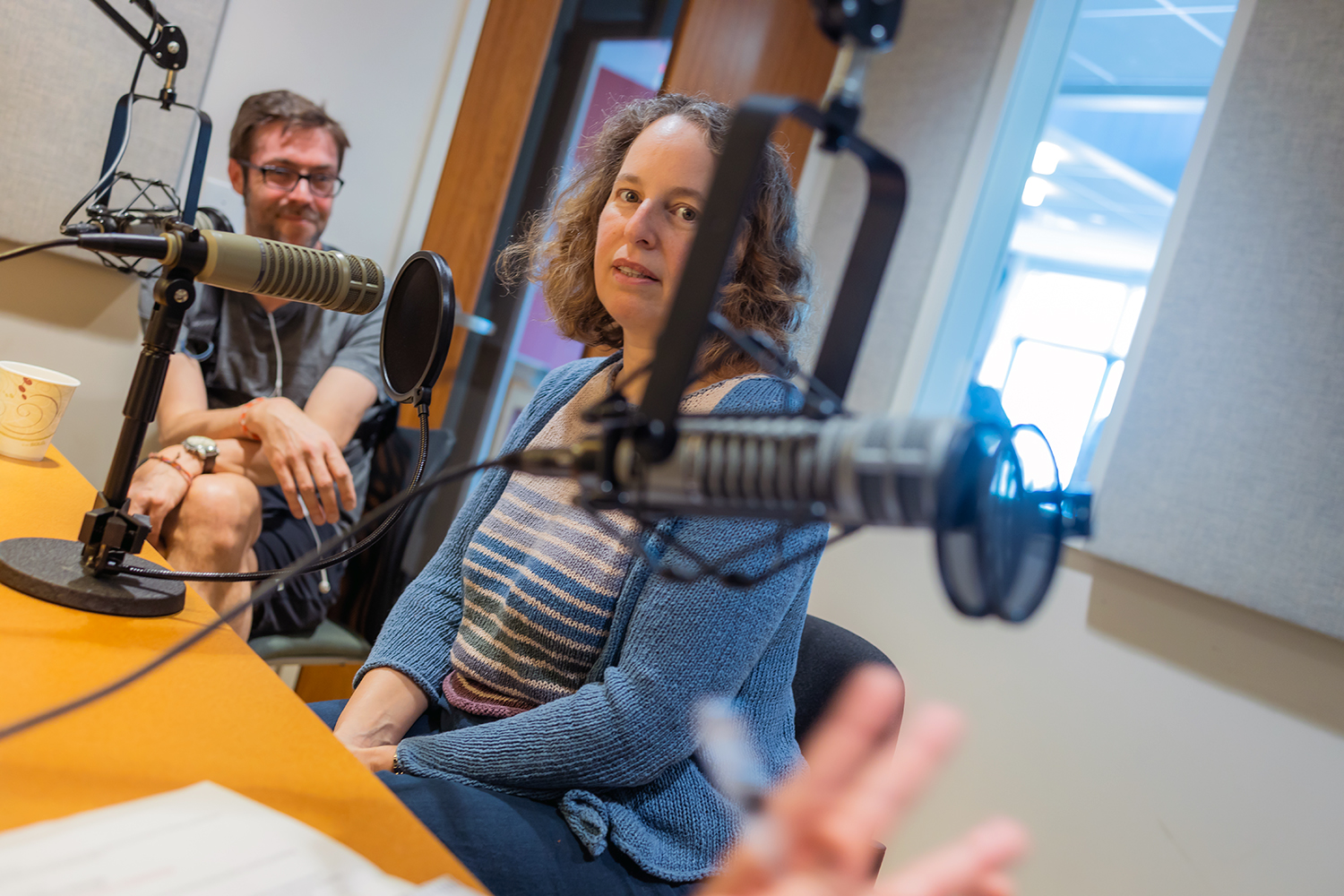 Meira Levinson on the Harvard EdCast