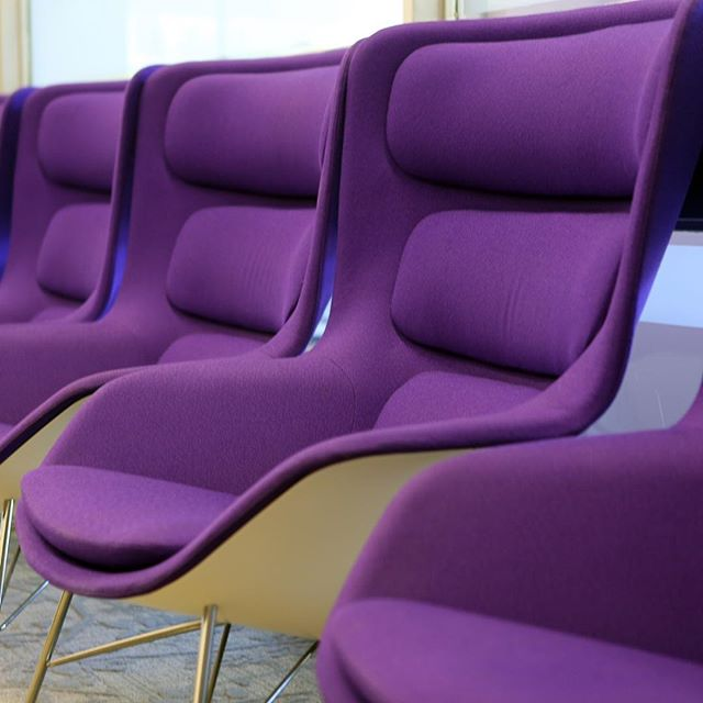 Purple chairs in Gutman Library