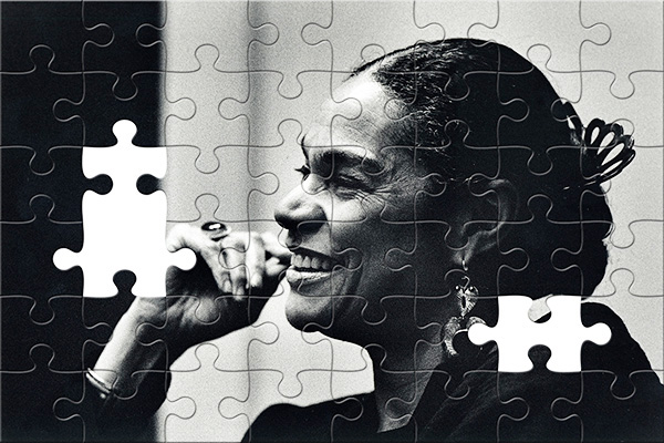 Sara Lawrence-Lightfoot puzzle
