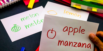 Bilingualism as a Life Experience
