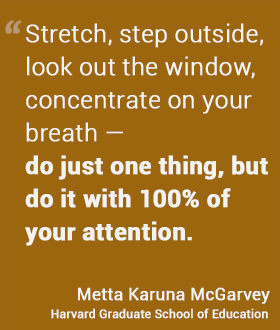 Stretch, step outside, look out the window, concentrate on your breath — do just one thing, but do it with 100% of your attention. - McGarvey, HGSE