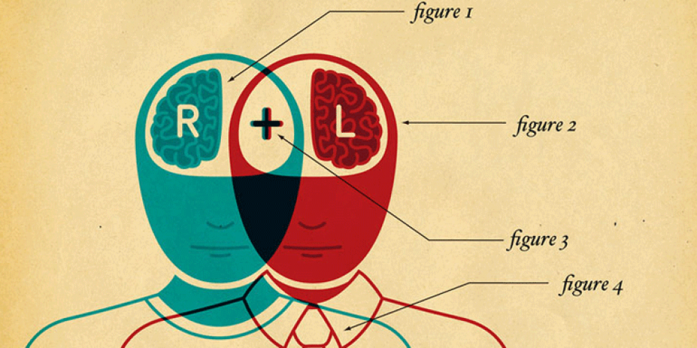 illustration denoting two figures with a left brain and right brain emphasized