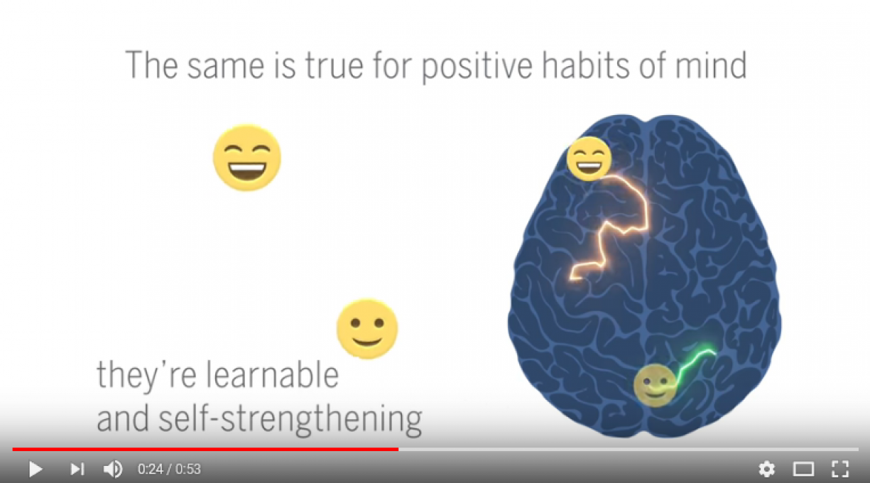 Screenshot of The Biology of Positivity