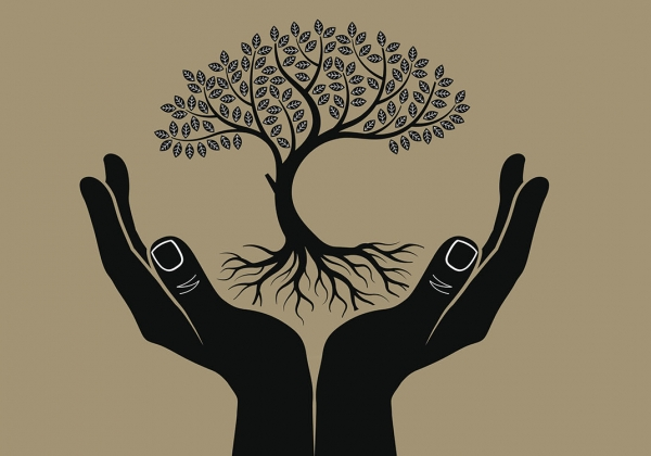 Silouette of hands holding up a rooted tree