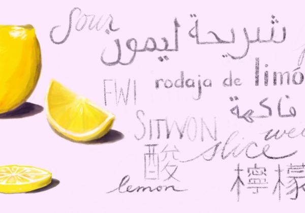 """illustration of a lemon next to the word """"lemon"""" in many languages"""