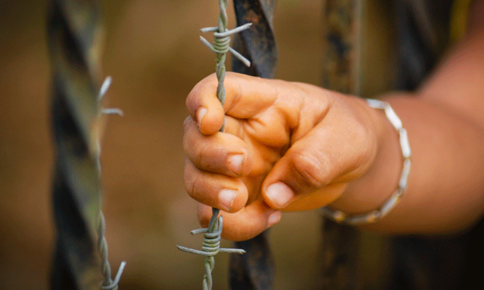 a child's hand on barbed wire