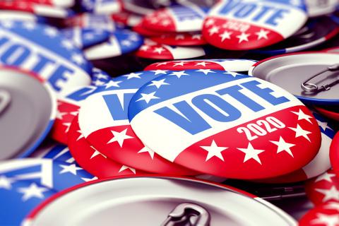 Vote 2020 pins