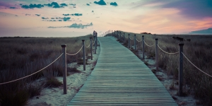 pathway leading to beach and sunset