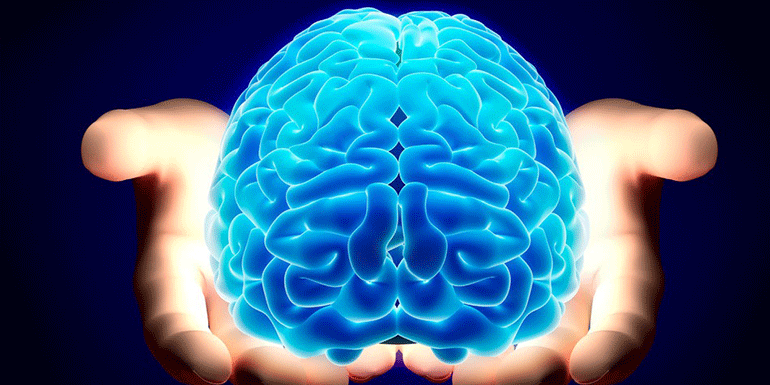 stress levels and the developing brain